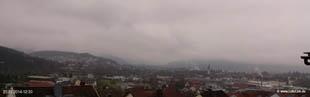 lohr-webcam-20-01-2014-12:30